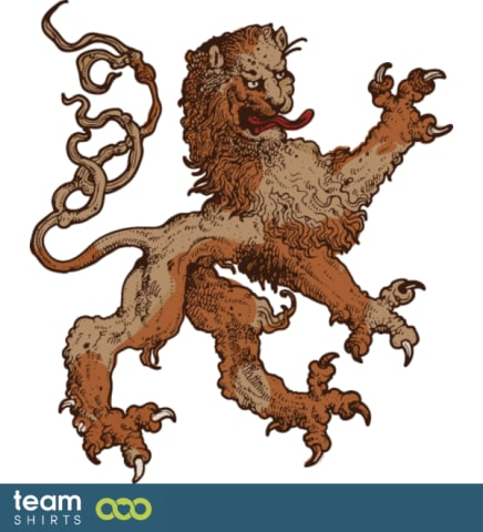 14 lion vectorstock 271505